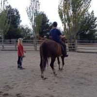 Equitación adaptada