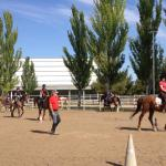 Clase de equitación